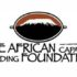 african-capacity-building-foundation-acbf